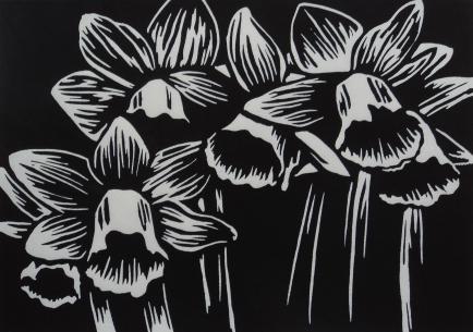 2018_Daffodils_BW