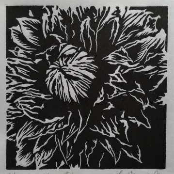 """Clematis, 4.75"""" x 4.75"""", Limited Edition"""