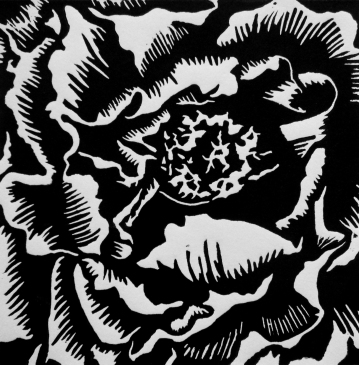 """Peony Bloom, 4.75"""" x 4.75"""", Limited Edition"""