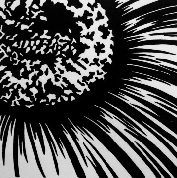 """Sunflower, 4.75"""" x 4.75"""", Limited Edition"""